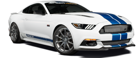 Shelby Mustang GT Perfect Ten