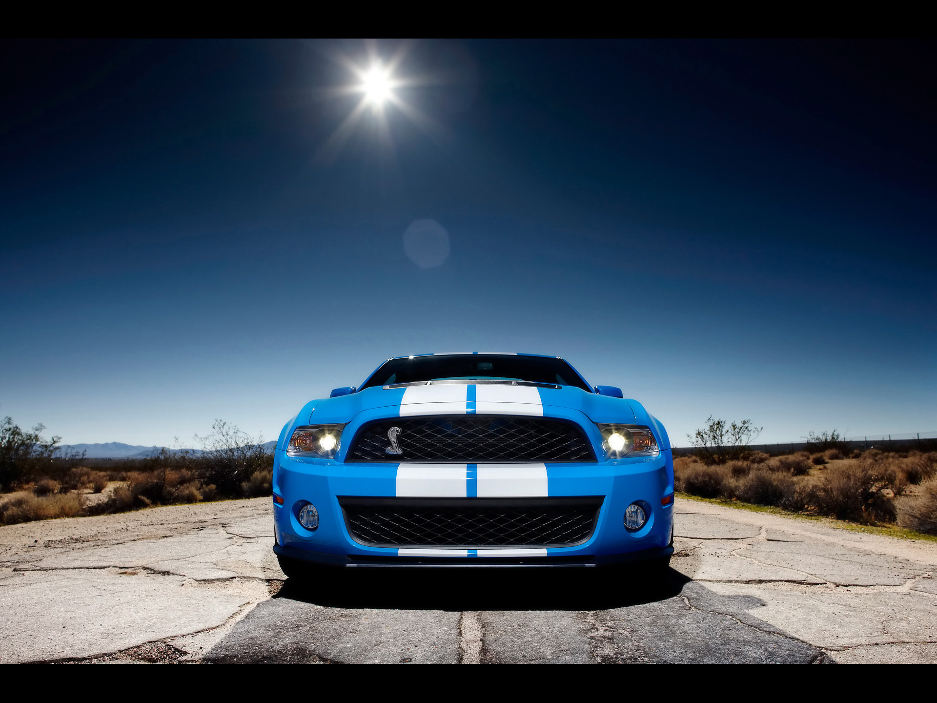 Building A Shelby Super Snake at Shelby-American In Las ...