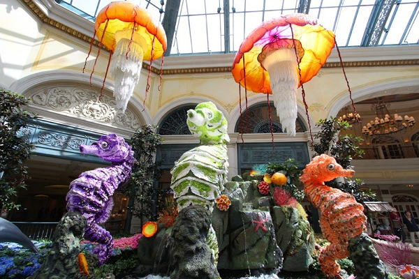 Bellagio Conservatory Displays Underwater Theme